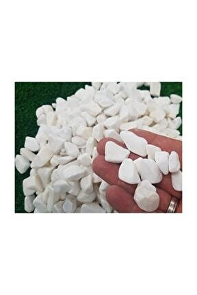 Beyaz Dolomit Taş 5 kg 1,5-2,5 cm Bahçe Taşı Dekoratif Taş Dere Taşı