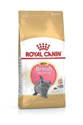 British Shorthair Kitten Kedi Kuru Maması 2 kg
