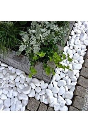 Beyaz Dolomit 50 Kg 4-6 Cm Taş Dekoratif Taş Dere Taşı Bahçe Süs Taşı Dolamit Loche