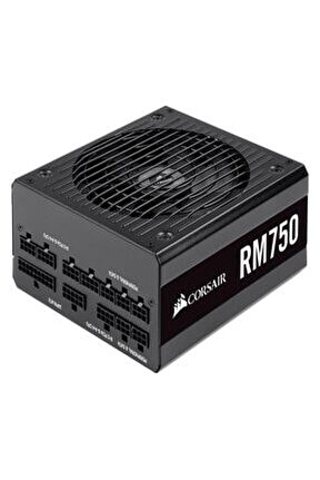 Cp-9020195-eu Rm750 80+ Gold 750 Watt Full Modüler Güç Kaynağı