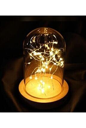 Dekoratif Peri Led Işıklı Cam Fanus