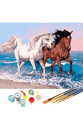 Beyaz Atlar Sayılarla Boyama Hobi Seti 40x50 cm