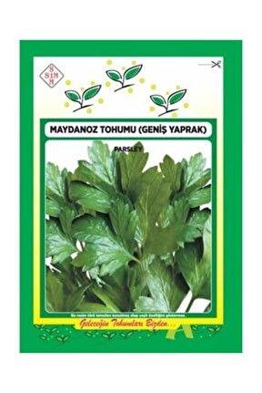 Maydanoz Tohumu 10 gr (2000 ADET) Geniş Yapraklı Maydanoz Tohumu Yerli Italyan Maydanoz Tohumu