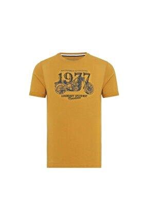 Erkek Spor T-Shirt