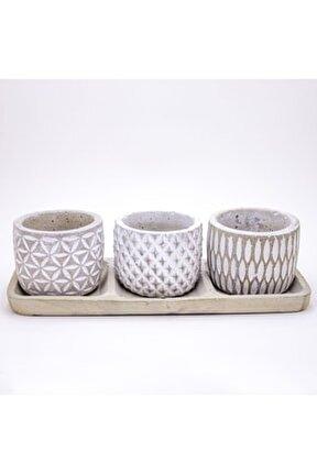 Tabaklı Trio Sukulent Beyaz Saksı Set 25x7x10 cm