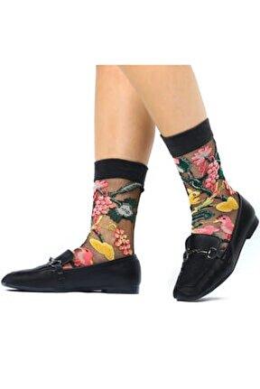 Japon Kore Tarzı Şeffaf Transparan Kadın Çorap Garden