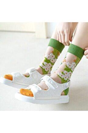 Japon Kore Tarzı Şeffaf Transparan Kadın Çorap Flowers