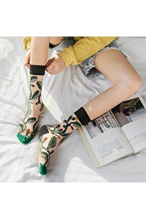 Japon Kore Tarzı Şeffaf Transparan Kadın Çorap Vine