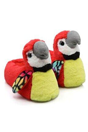 Papagan Hayvanlı Papağan Kışlık Ev Pandufu