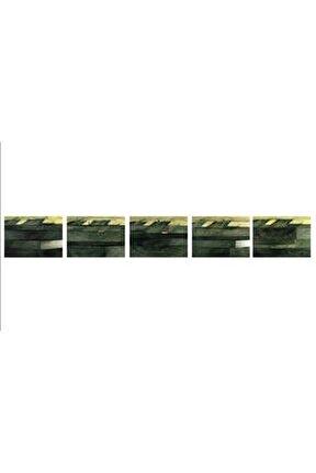 Zaman Mekân Doğa Ölüm 3, 50x70x13, Tuval Üzerine Foto Enstalasyon