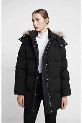 Modern Down Coat