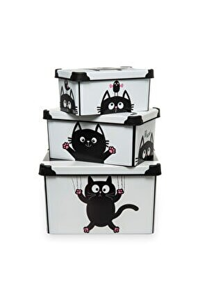 Style 3'lü Box Meow Kutu
