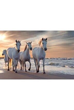 Beyaz Atlar 1000 Parça Puzzle Yapboz