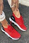 Unisex Insport Sneaker