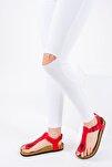 Kırmızı Kadın Sandalet B777805009
