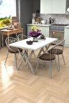 Eylül Silver 4 Kişilik Mutfak Masası Takımı Beyaz Kahve
