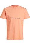 Erkek Bisiklet Yaka T-shirt Regular Fıt Logo T-shırt - 12176780