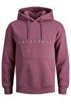 Erkek Copenhagen Sweatshirt Loopback Relaxed Fıt Hoodıe - 12176864