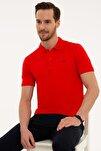Erkek Nar Çiçeği Slim Fit Polo Yaka T-Shirt