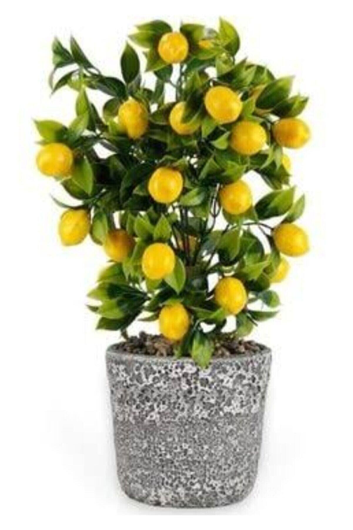 ÇILGIN Yapay Limon Ağacı 42 Cm
