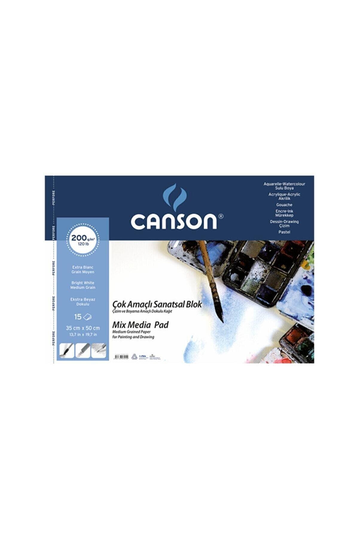 Canson Fıneface Çok Amaçlı Resim Blokları 200gr 35x50 15yp