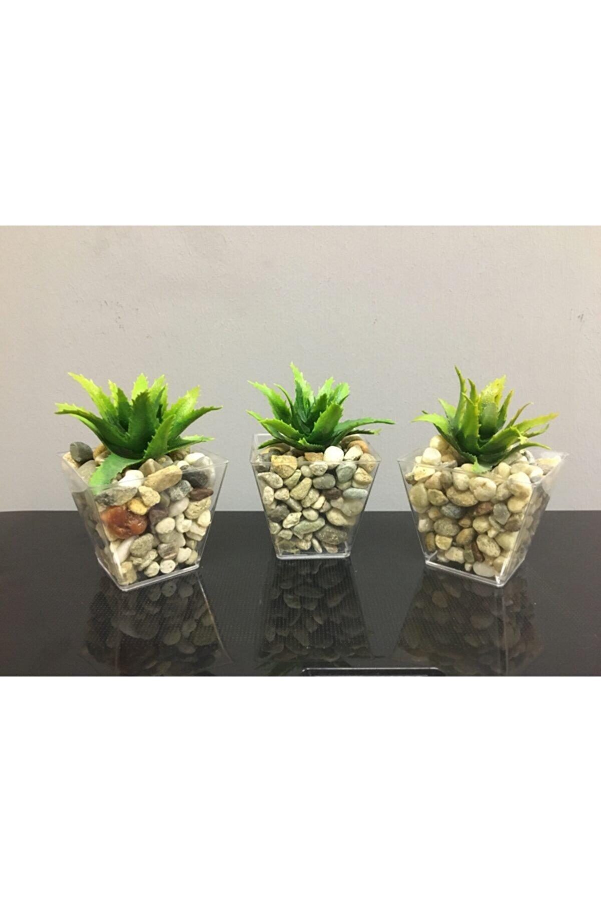 Süs ağacı Sukulent 3'lü Çakıl Saksıda Yapay Sukulent Succulent Yapay Çiçek 6cmx9cm