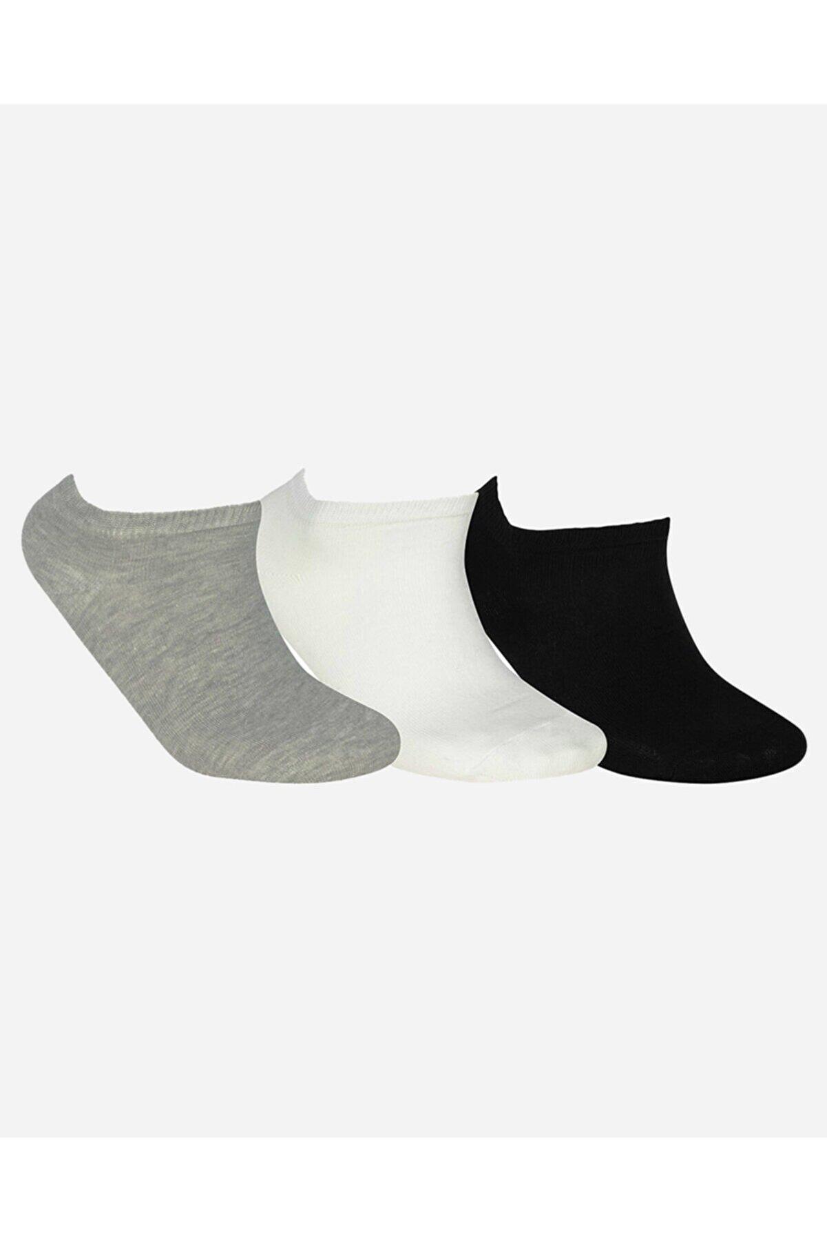 Skechers U SKX NoPad Low Cut Socks 3 Pack Unisex Çok Renkli Çorap