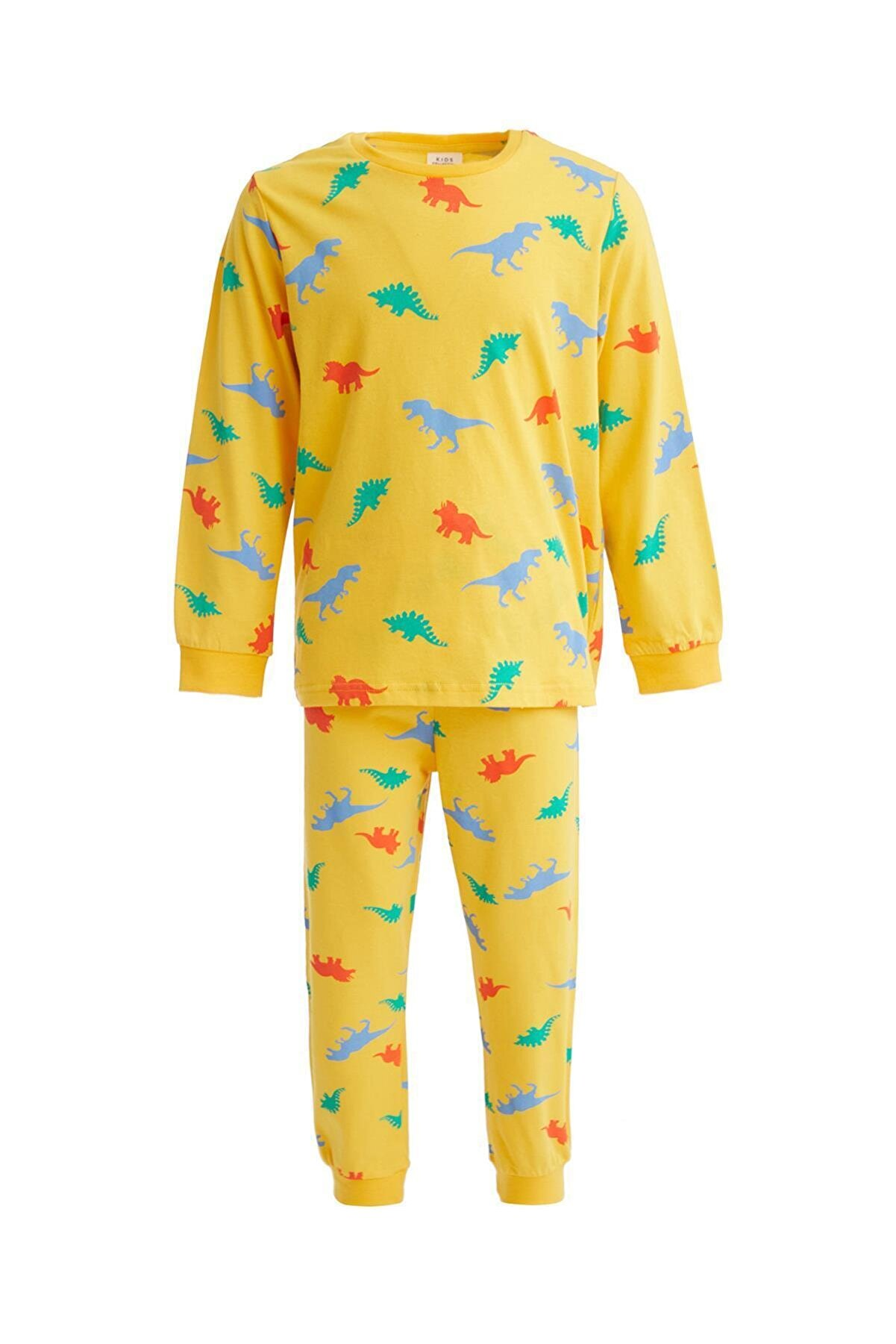 Defacto Erkek Çocuk Dinozor Baskılı Pijama Takımı