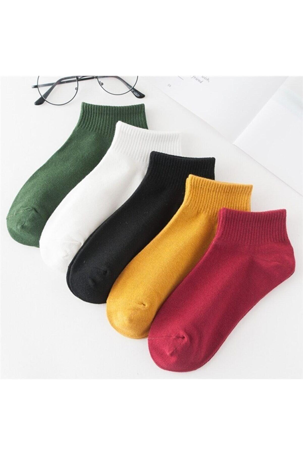 BGK 5'li Kadın Renkli Kısa Patik Çorap