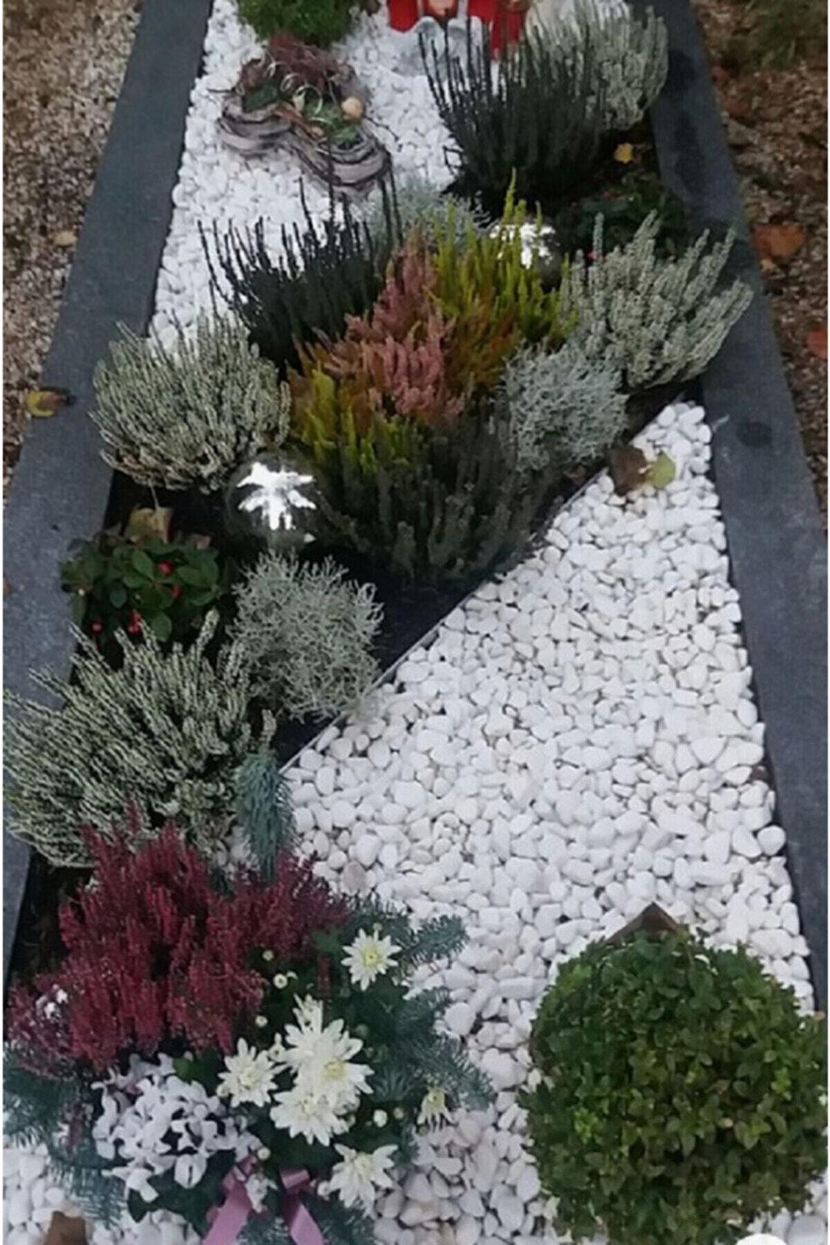 Ekodoğa Beyaz Dolomit Taş 25 Kg 1,5-2,5 Cm Bahçe Süs Taşı Dekoratif Taş Dere Taşı