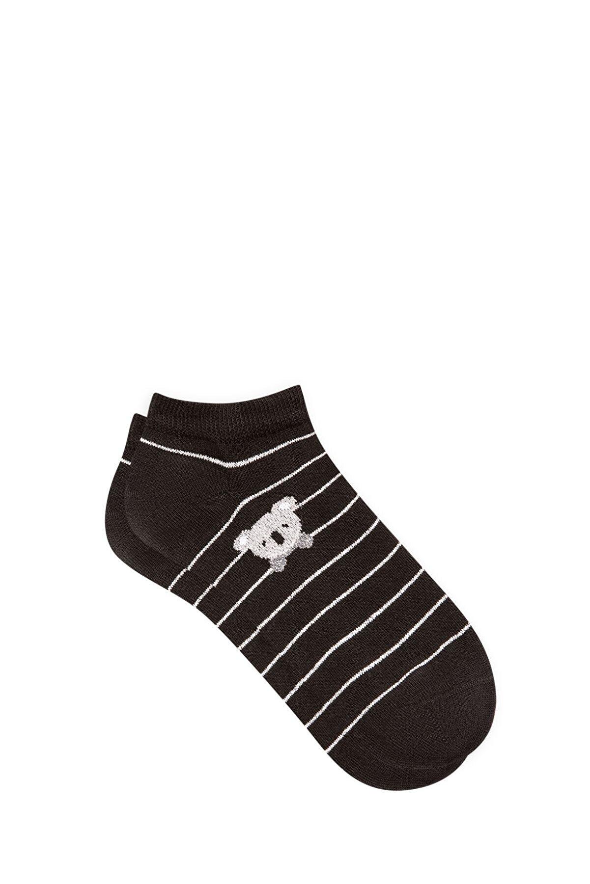 Mavi Koala Işlemeli Siyah Patik Çorap 197978-900