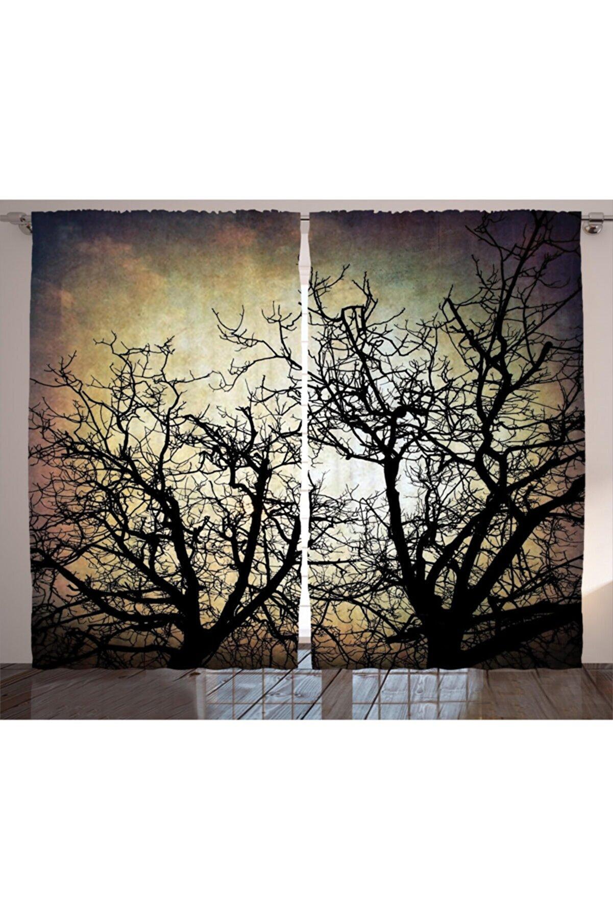 Orange Venue Ağaçlar Perde Yansıyan Ağaç Silüeti
