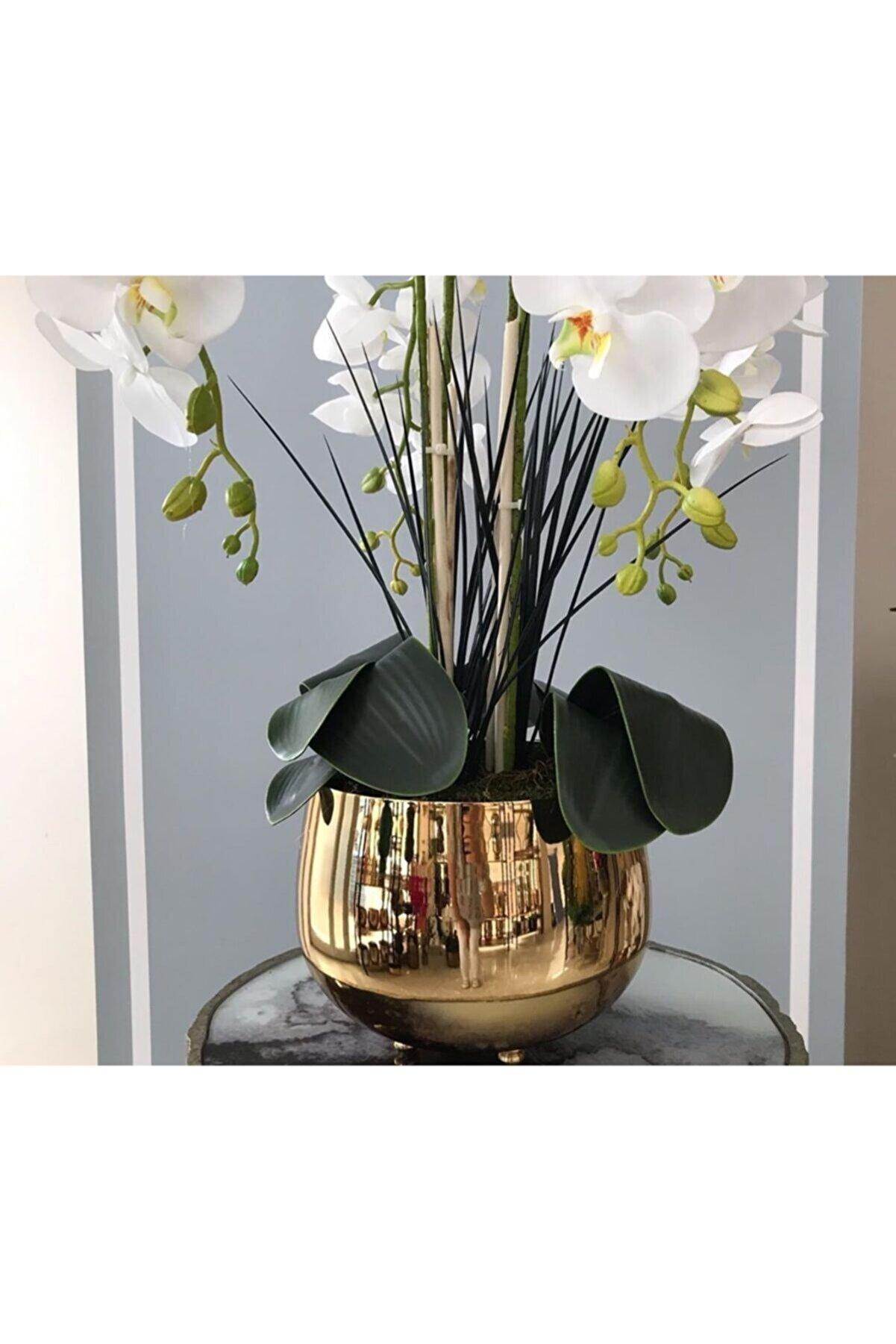 Hazella Home Gold Metal Orkide Saksısı Vazo