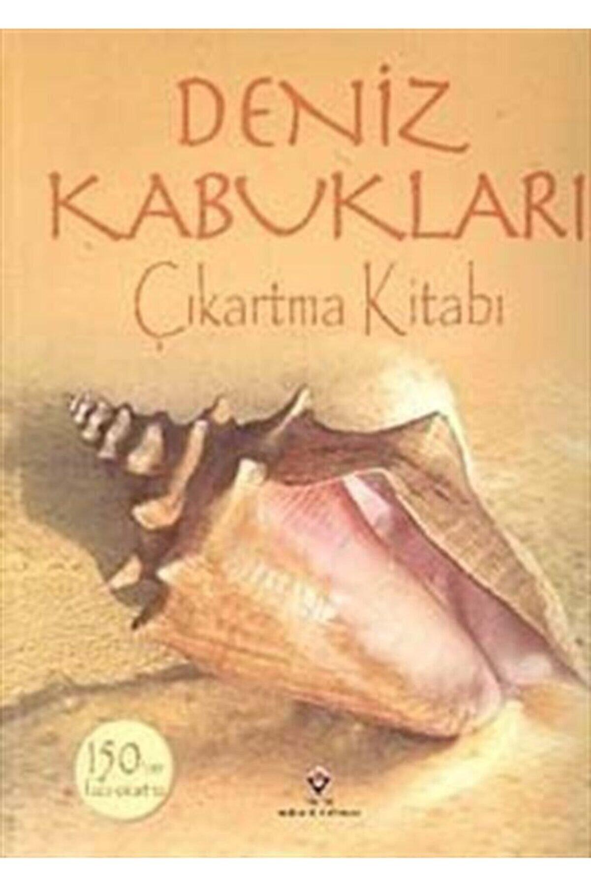 Tübitak Yayınları Deniz Kabukları / Çıkartma Kitabı
