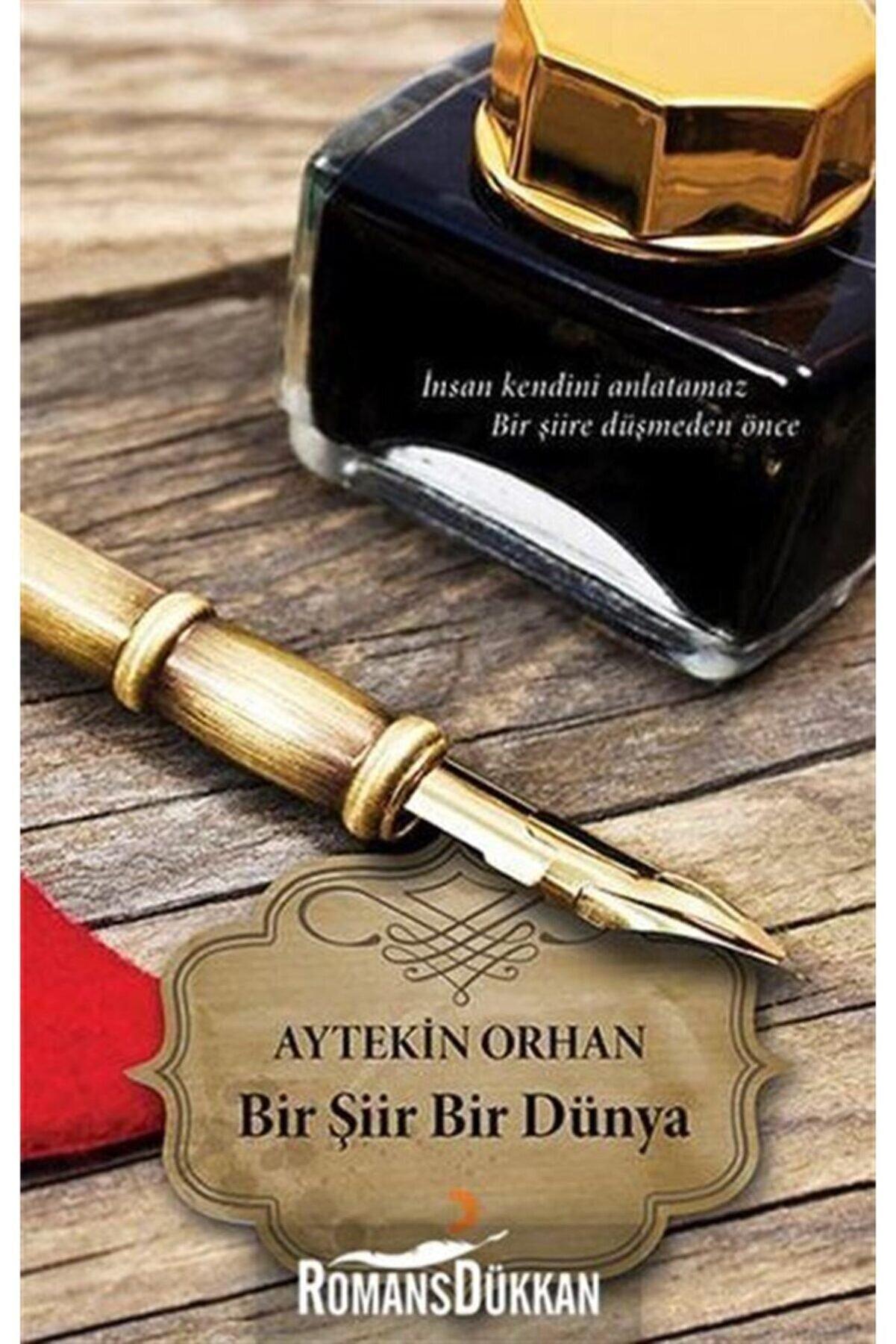 Cinius Yayınları Bir Şiir Bir Dünya