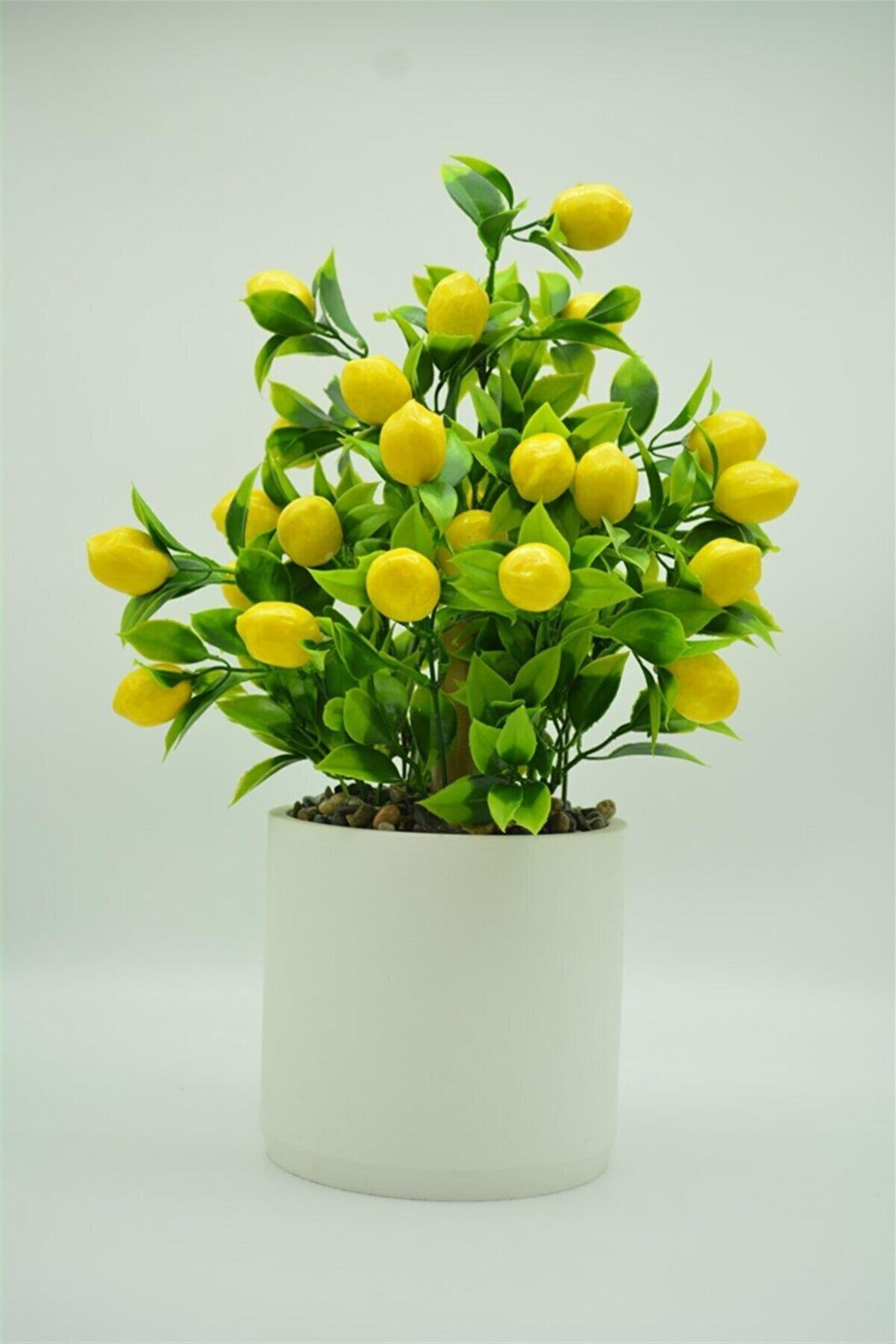 Hepsihizligidiyor Beton Saksıda Yapay Limon Ağacı