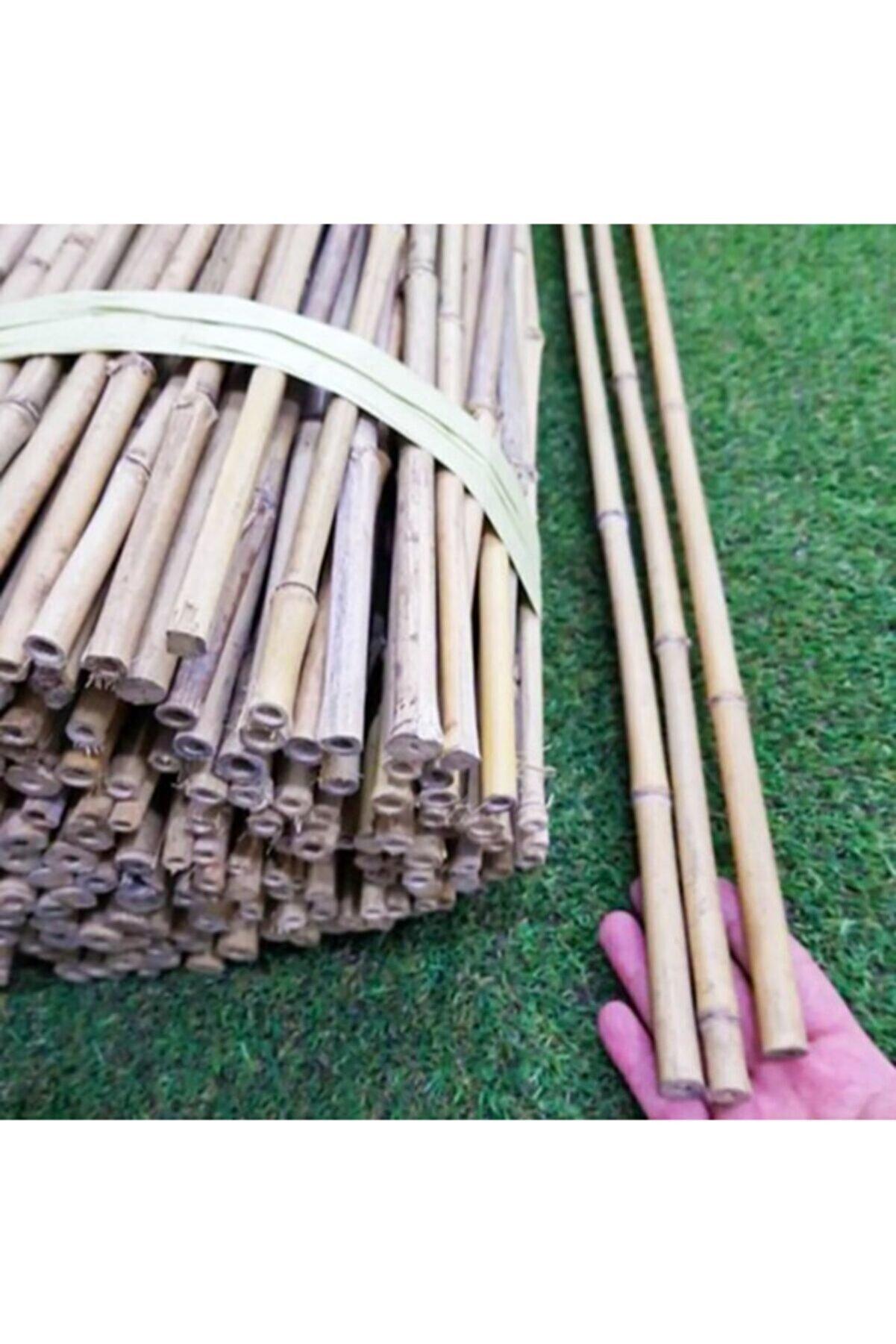 Akik Bambu Bitki Destek Çubuğu 180 Cm (5 Adet)