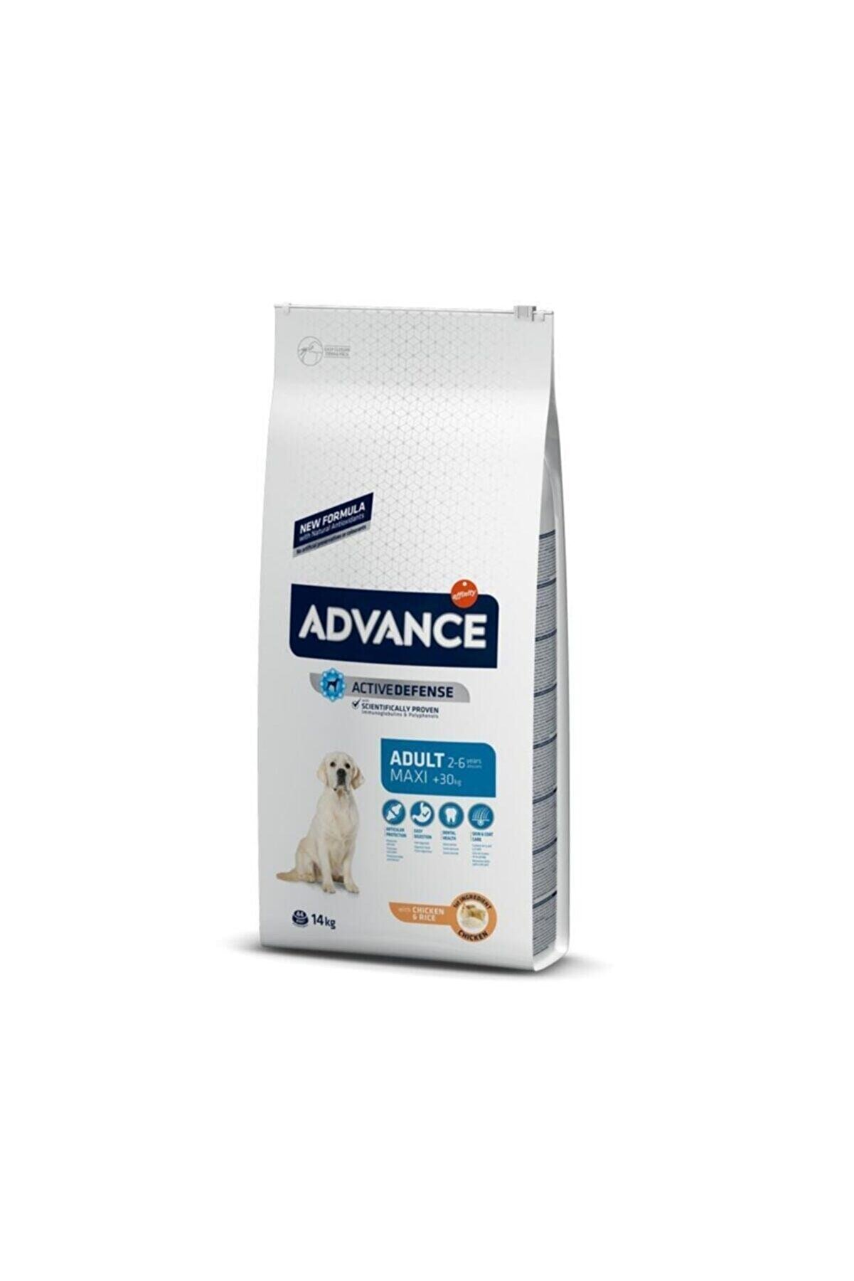 Advance Adult Maxi Tavuklu Büyük Irk Yetişkin Köpek Maması 14 Kg
