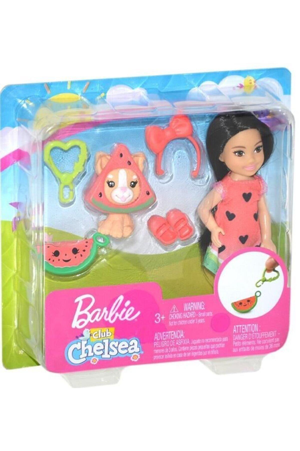 Barbie Kostümlü Chelsea Ve Hayvancığı Karpuz Temalı Oyun Setleri  Ghv71