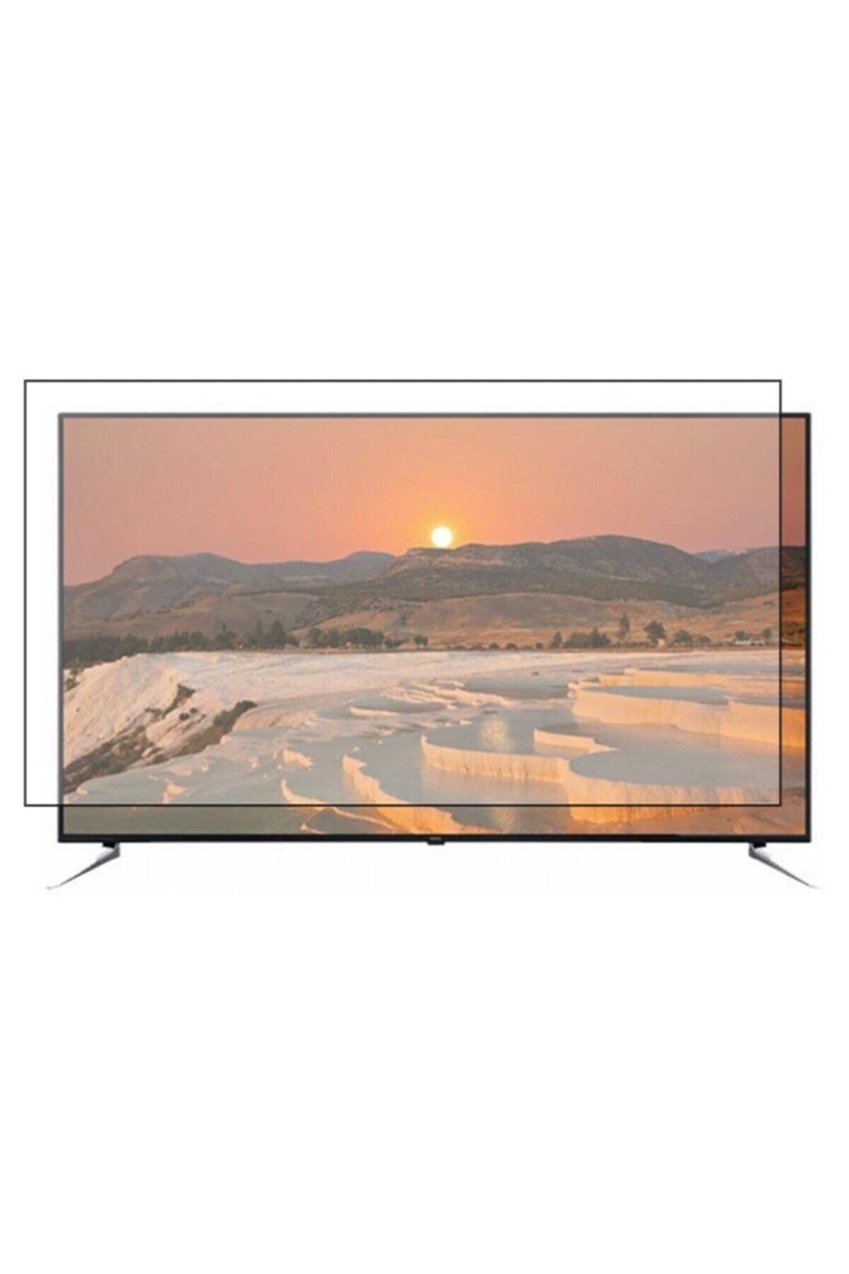 PRO KORUYAN Vestel 65 Inç Uyumlu Kırılmaz Tv Ekran Koruyucu
