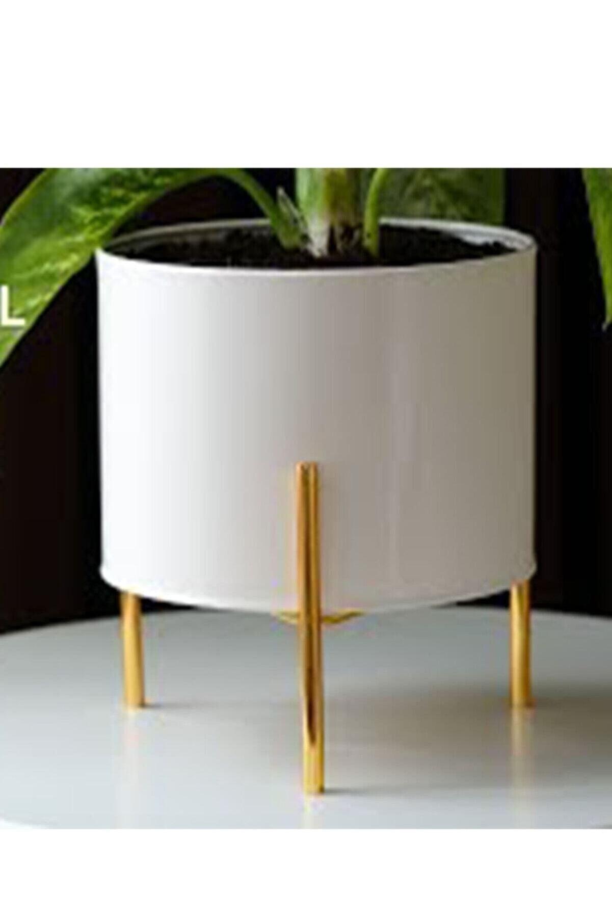 Eksprespazar Modern Metal Ayaklı Beyaz Dekoratif Saksı Vazo