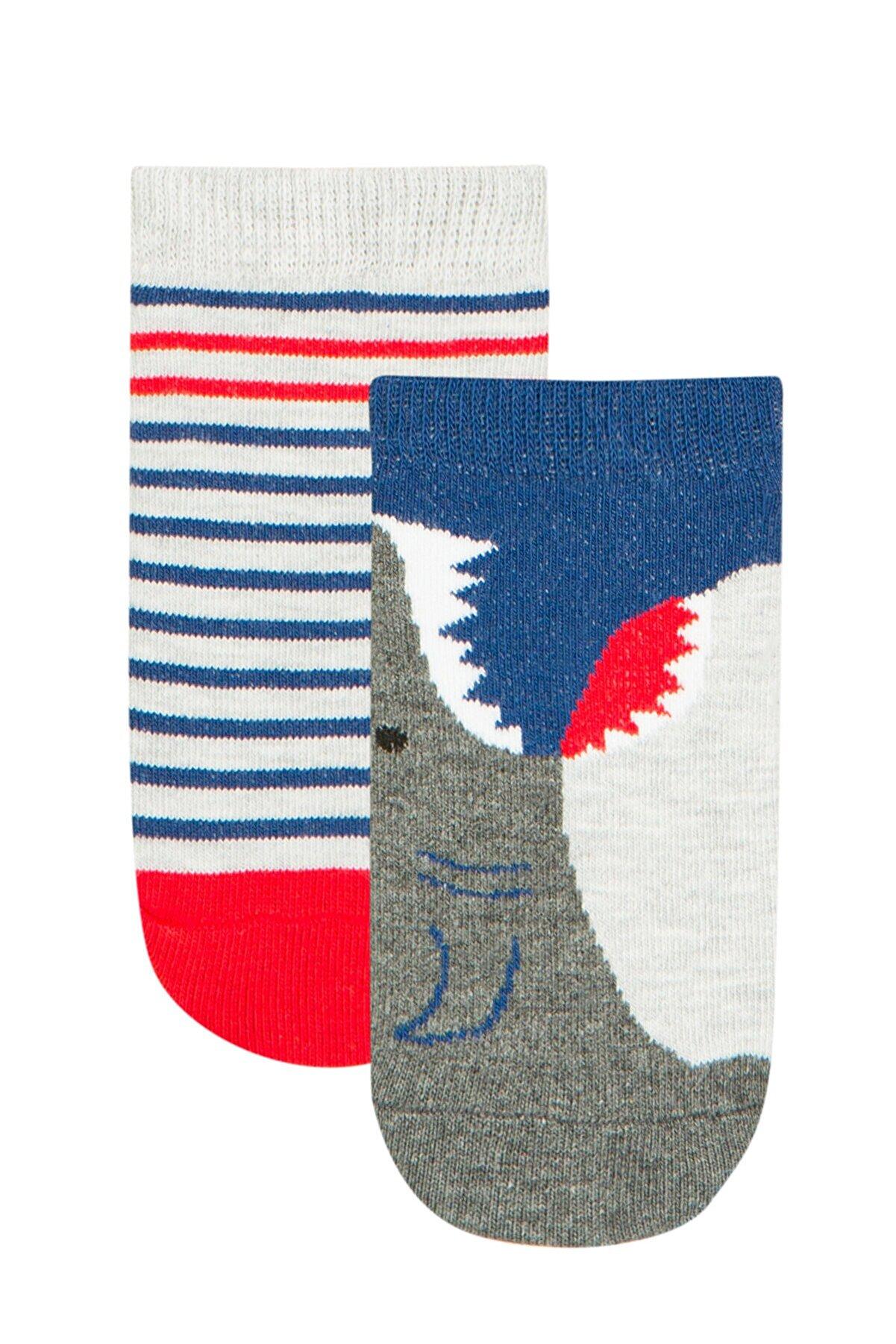 Penti Lacıgrı Erkek Çocuk Strıpe Shark 2li Patik Çorap