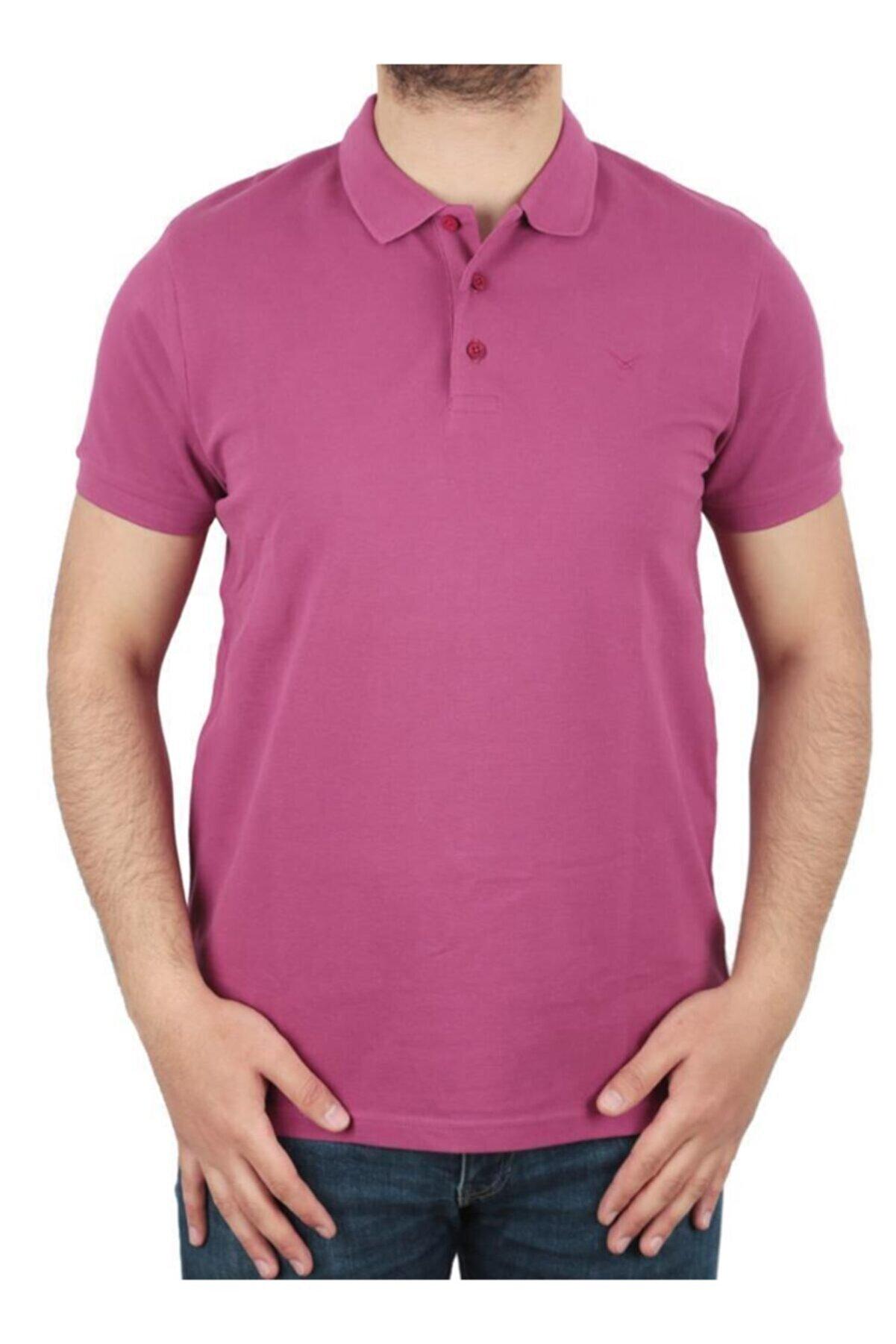 Cazador Erkek Mor Polo Yaka T Shirt 4613