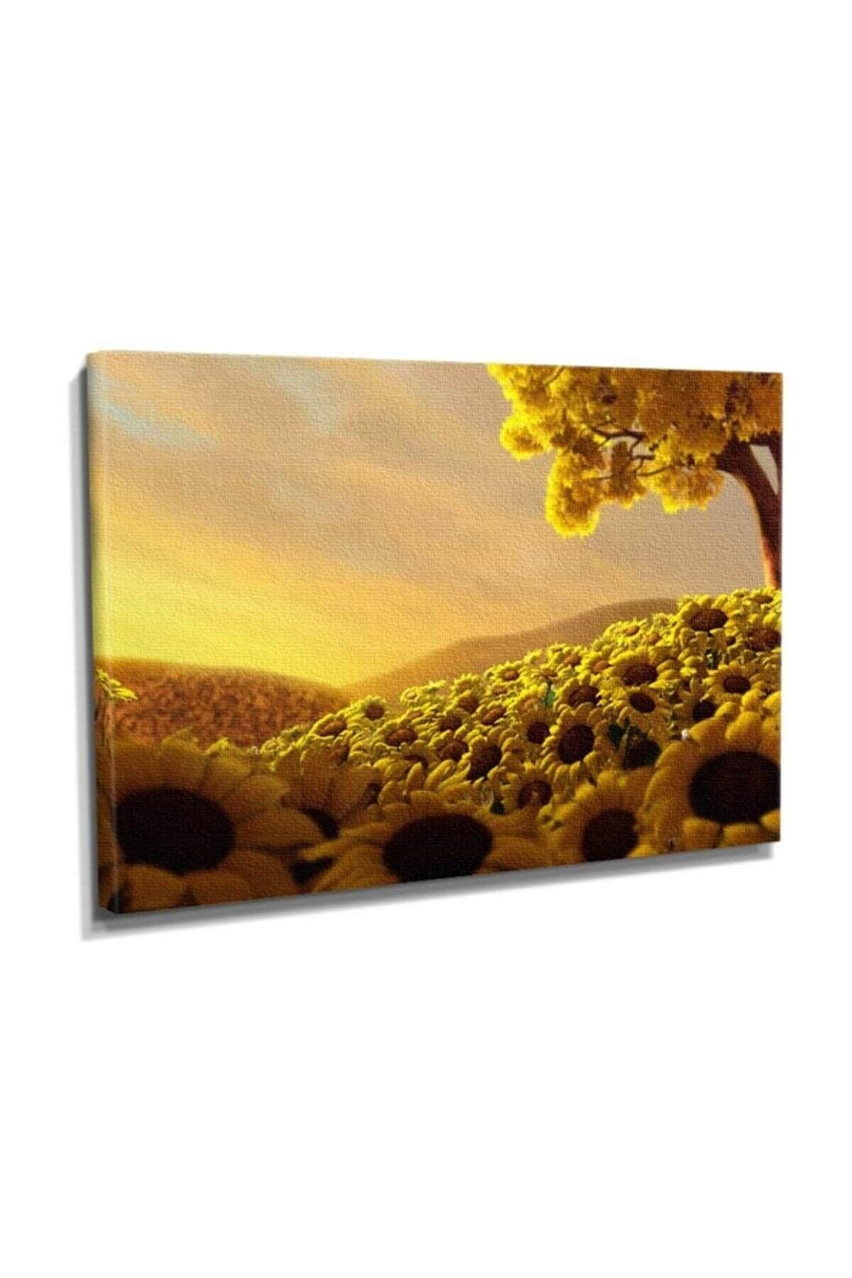 Dekor Sevgisi Ay Çiçeği Bahçesi Tablosu 60x40 DTC145301425