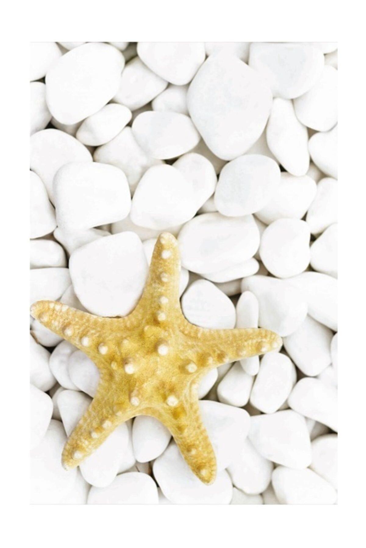 Soley Dijital Yıldız  40x60 Banyo Paspası 0035 01