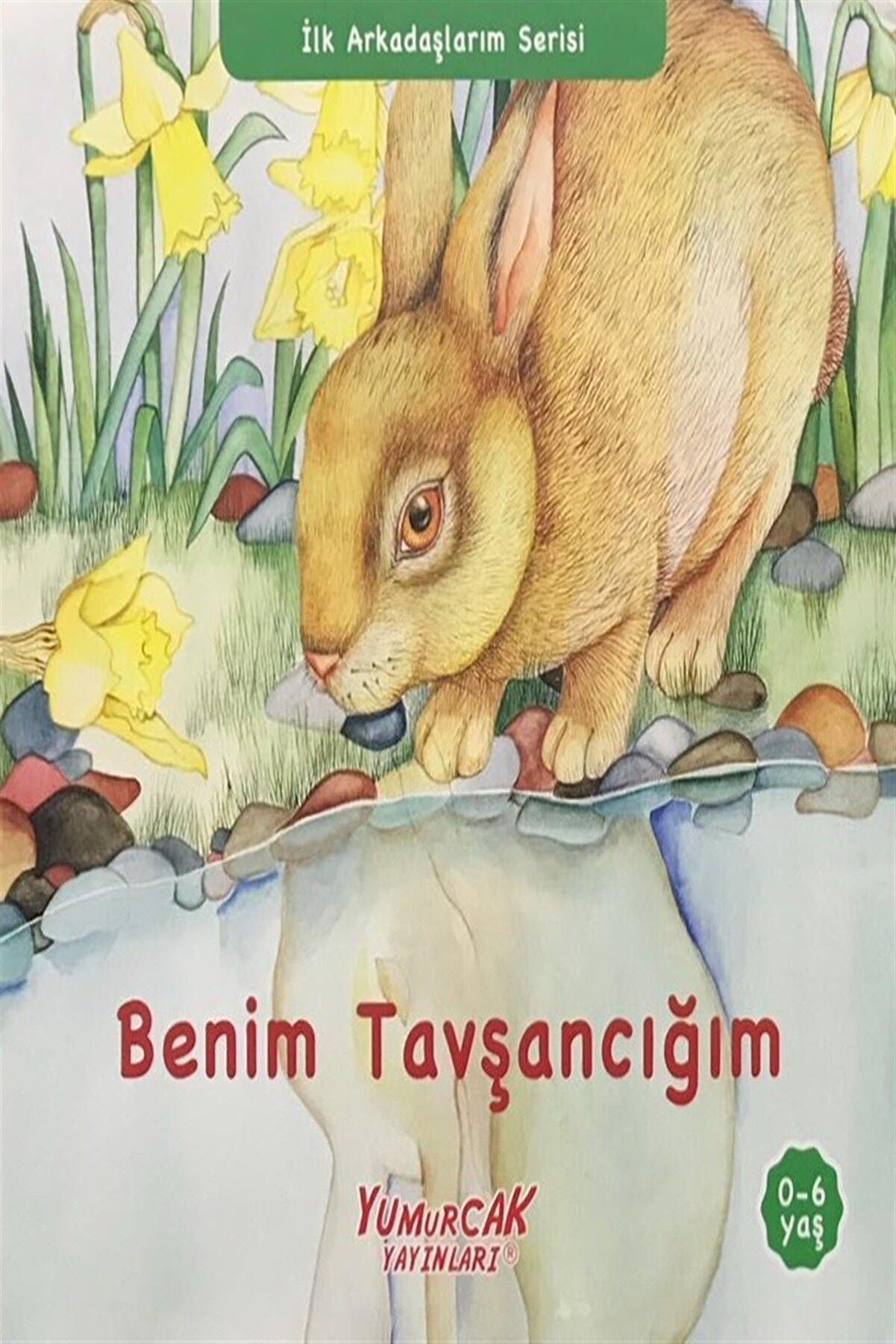 Yumurcak Yayınları İlk Arkadaşlarım Serisi (2 Kitap) - Kolektif
