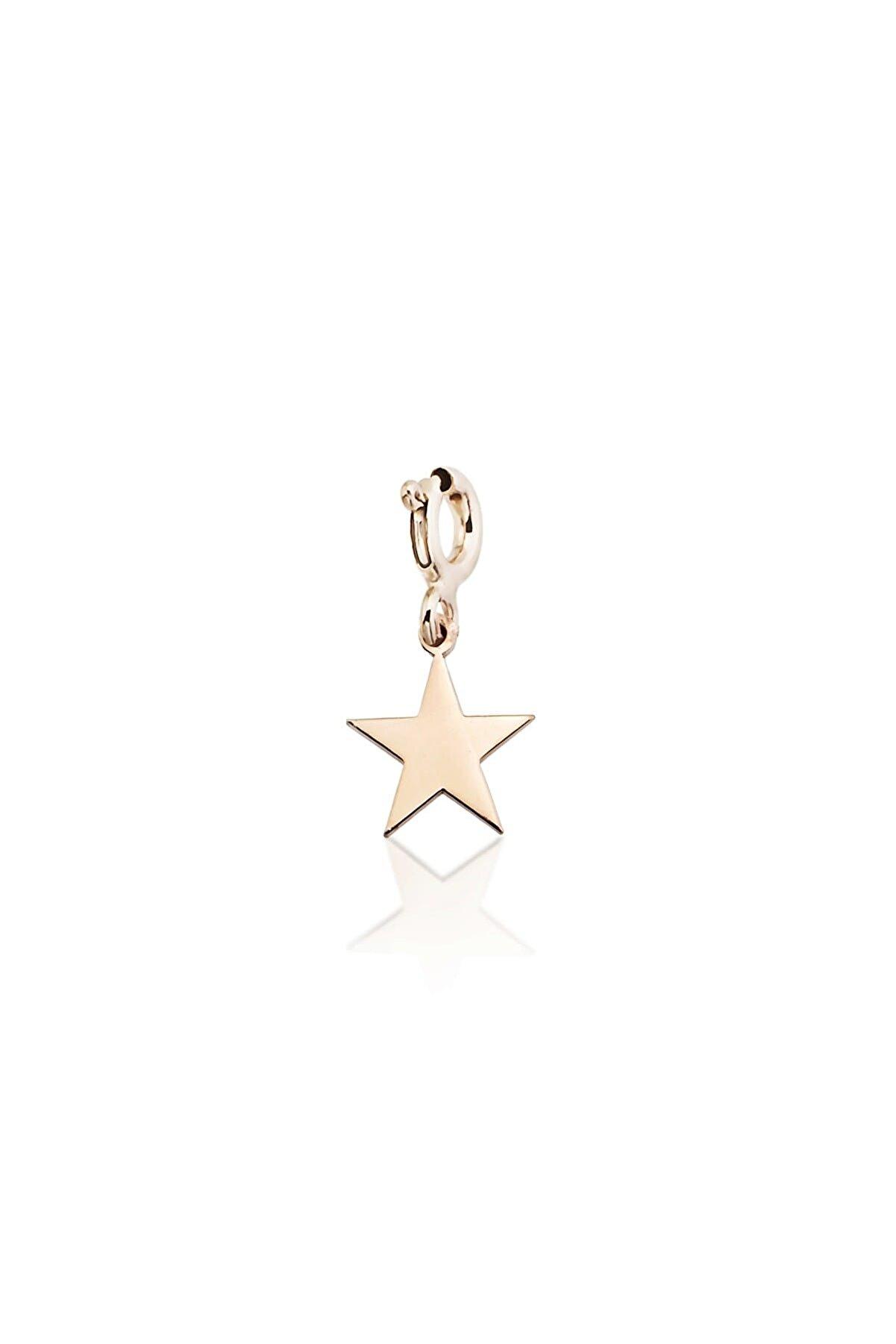 Femmevien Kadın Rose 925 Ayar Gümüş Yıldız Charm