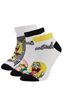 Defacto Erkek Çocuk Spongebob Squarepants Lisanslı 3'lü Patik Çorap