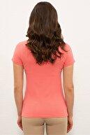 US Polo Assn Turuncu Kadın T-Shirt