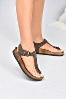 Fox Shoes Kadın Kahverengi Süet Sandalet